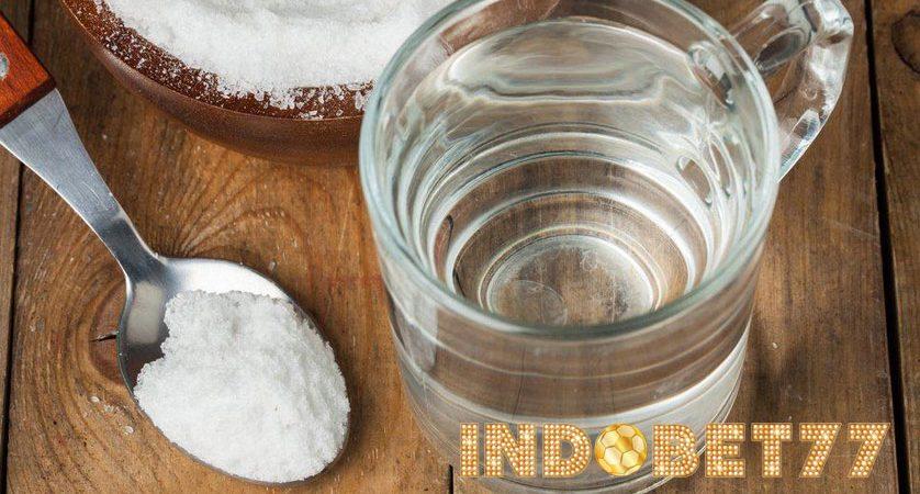 Manfaat Air Garam Untuk Kesehatan Ayam Bangkok Aduan